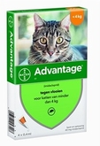 Bayer Advantage Kat 4 Pipetten 40 tot 4 kg